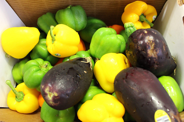 Produce-Desert-Harvest